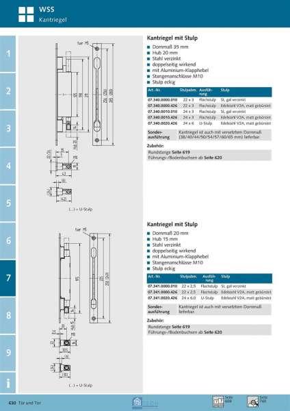 Kantriegel 20 mm Dorn, 250x22x2,5 mm - WSS 07.341.0000.426